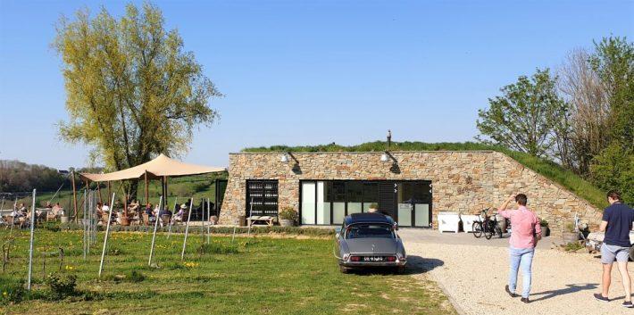 bezoek aan wijngaard St. Martinus