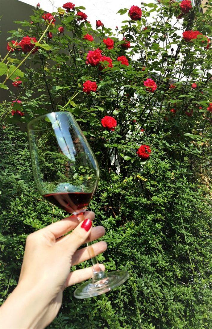 Pinot Noir wijn Spatburgunder wijnglas
