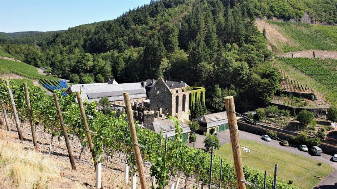 Weingut Kloster Marienthal