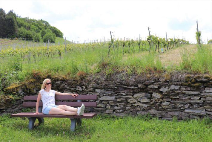 Wijnreis Moezel en Duitse wijn: tussen de druiven