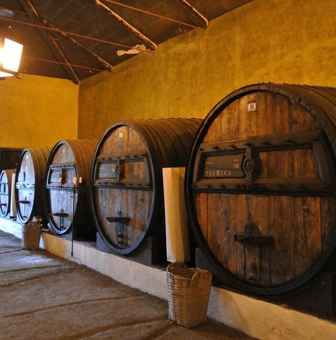 Pacheca port wijnvaten