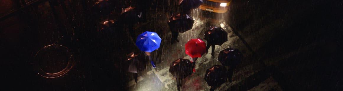 theblueumbrella The Blue Umbrella