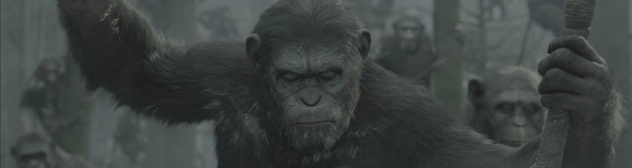 dawnplanetapes Dawn of the Planet of the Apes