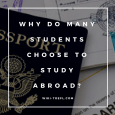 Toefl writing: passport, study abroad