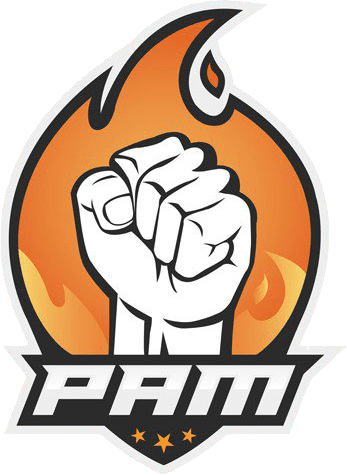 PAM ESports Liquipedia Rocket League Wiki