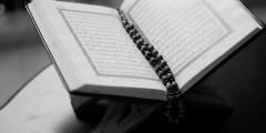 معنى مدهامتان في سورة الرحمن
