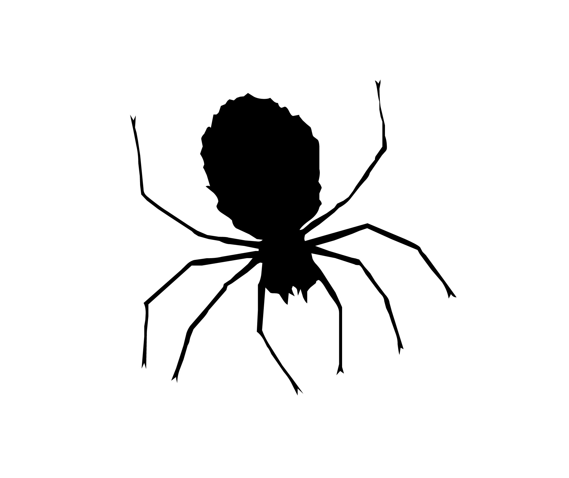 Spider Black And White Black And White Spider Clipart 4