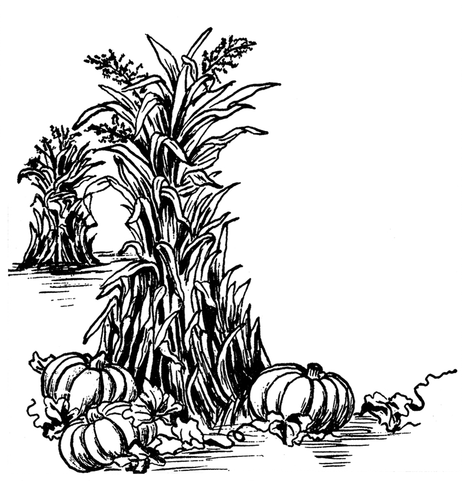 Fall Clip Art Black And White