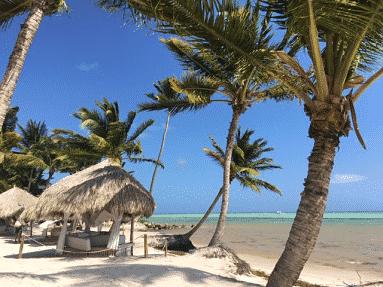Punta Cana 6