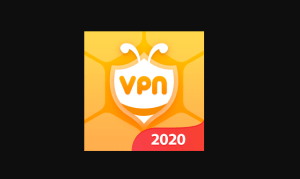 Bee VPN for PC