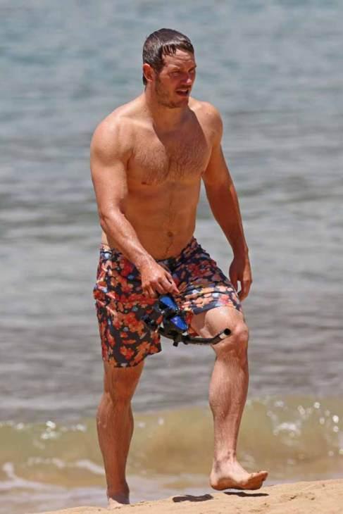 Chris Patt Muscular Build