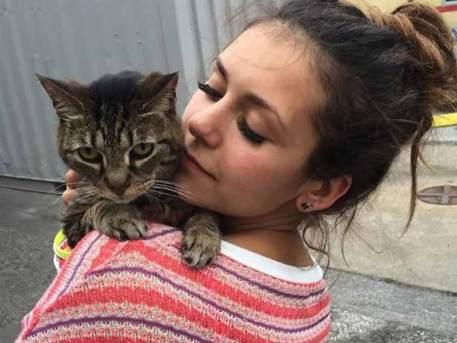 Nina's pet cat