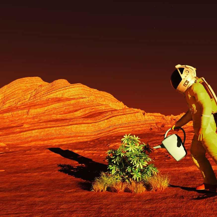 NASA Mars and the Moon