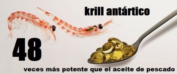 krill-oil_Wikigimnasio.com