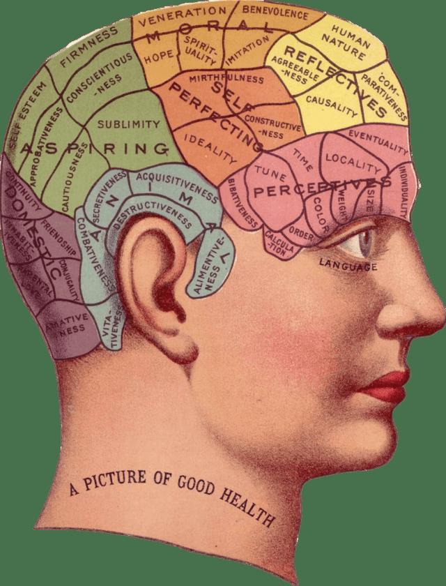 beneficios del omega 3 en el cerebro