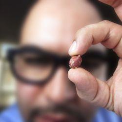 peanut-resveratrol-wikigimnasio.compeanut-resveratrol-wikigimnasio.com