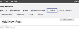 How to Add Custom Excerpts in WordPress