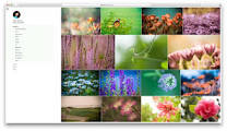 How to Create Beautiful Photography Website in a Minute