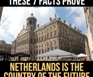 The Netherlands Proves To Be The Country Of The Future With 7 Interesting Facts