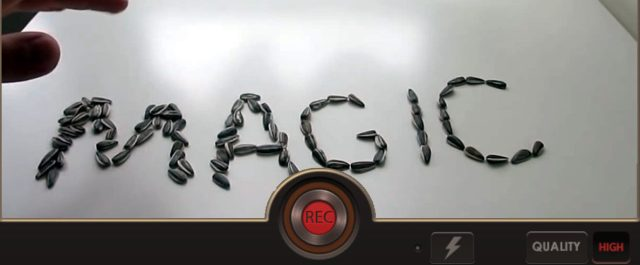 p-reverse-movie-fx-magic-video-R0rAYdrk9l-1