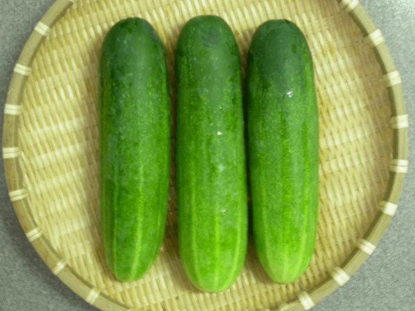 Cucumbers Bitter
