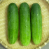 Why are some cucumbers bitter to taste?  How to get rid of it?