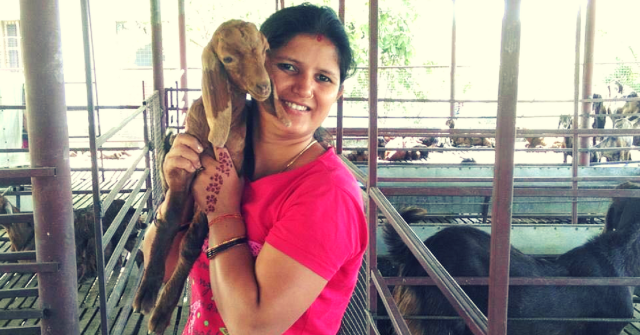 Shweta Goat Farming