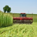 Best 6 Tips in Harvesting Your Crops Successfully