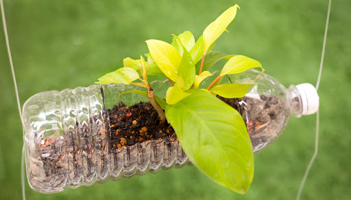 Eco friendly plastics