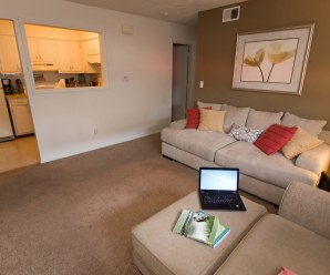 Essential Tips on Getting Renter's Insurance