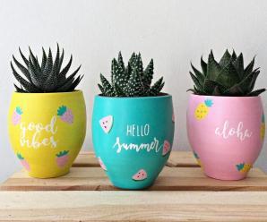 Tips on Planters as Interior Decorators