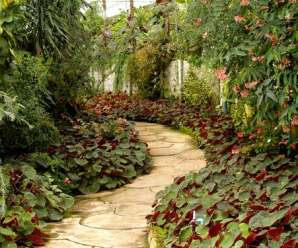 5 Important Reasons Why You Should Hire A Professional Landscaping Company