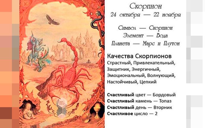 Описание Скорпионов