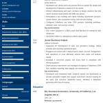 Business Analyst Resume Business Analyst Resumelab 2 business analyst resume|wikiresume.com