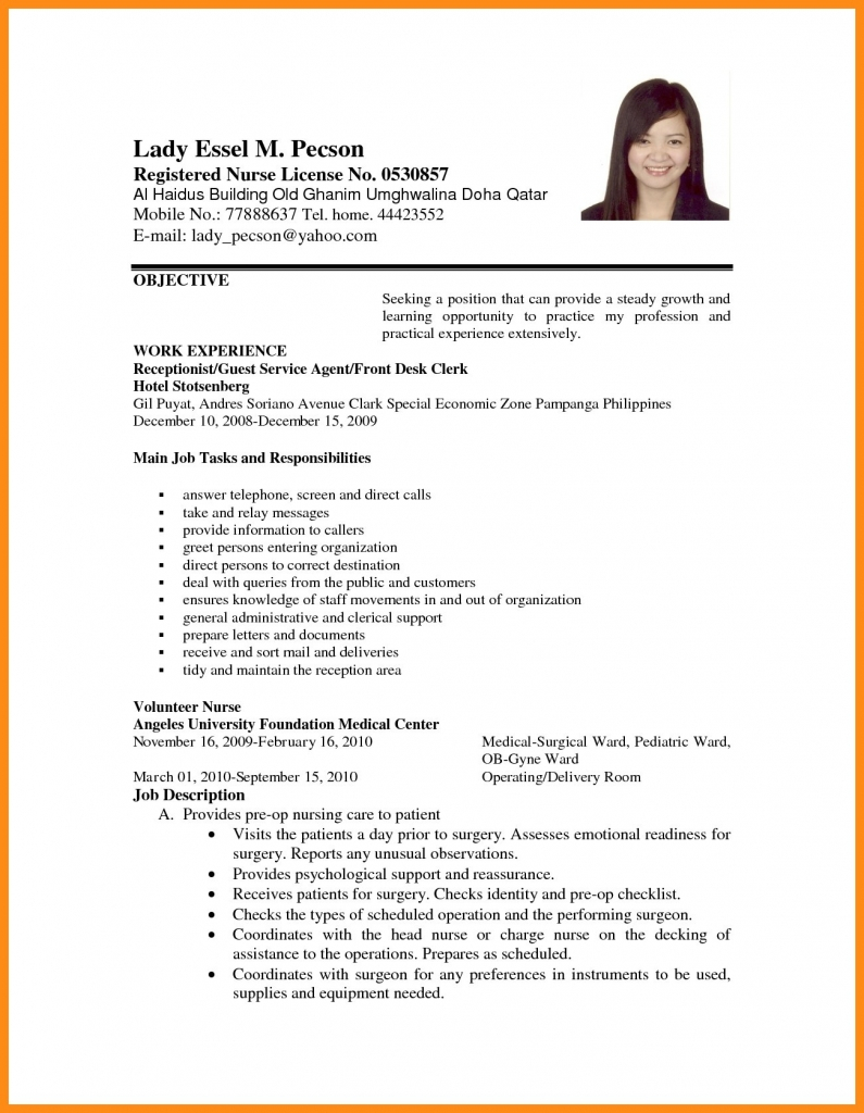 Example Of Resume Sample Resume For Job Application Pdf World Of Example And Papers