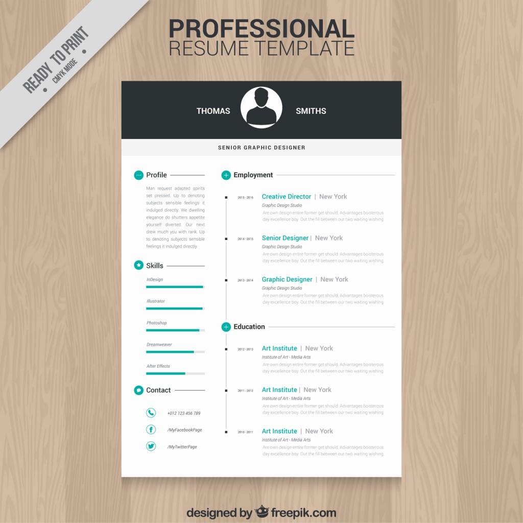 Resume Template Free Professional Resume Template 1024x1024 resume template free|wikiresume.com