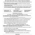 Sales Resume Examples Salesassociate sales resume examples wikiresume.com