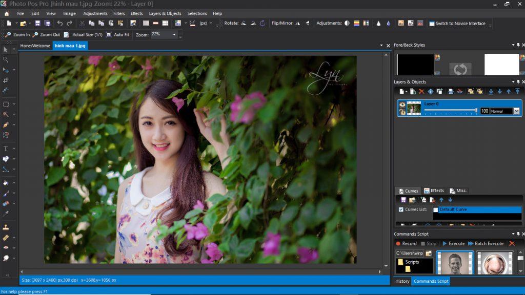 Phần mềm Photo Pos Pro - Ảnh 5