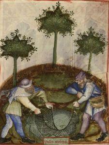 BNF Nouvelle acquisition latine 1673, fol. 78 1.jpg