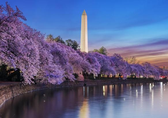 Вашингтон восной.