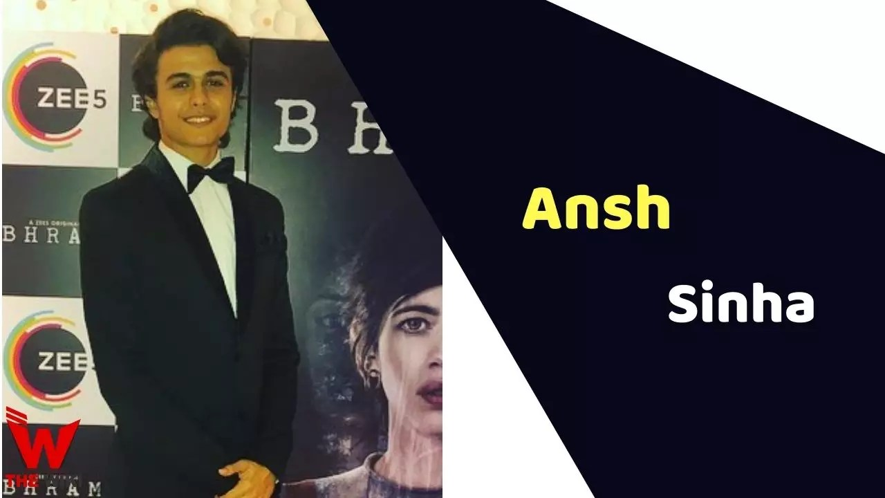Ansh Sinha (Actor)