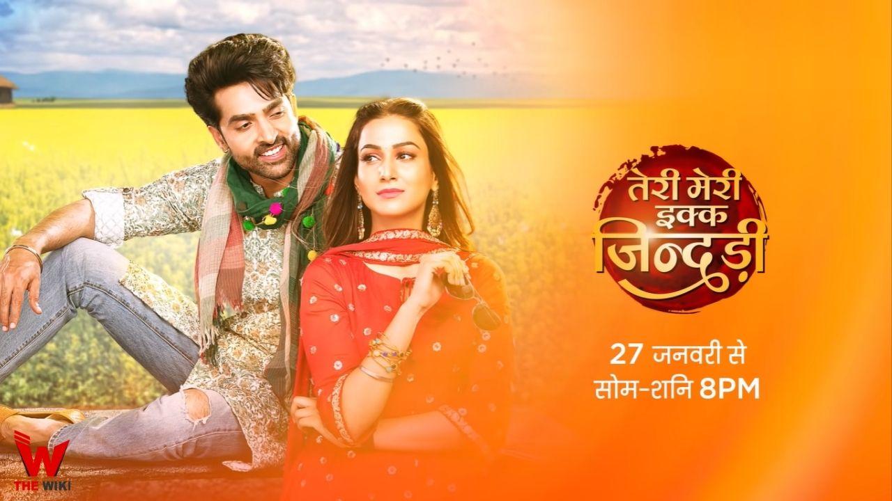 Teri Meri Ek Jindri (Zee TV)
