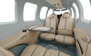2022 Special Edition, Custom Interior Beechcraft Bonanza G36