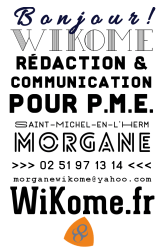 Carte de visite / conception graphique / Wikome