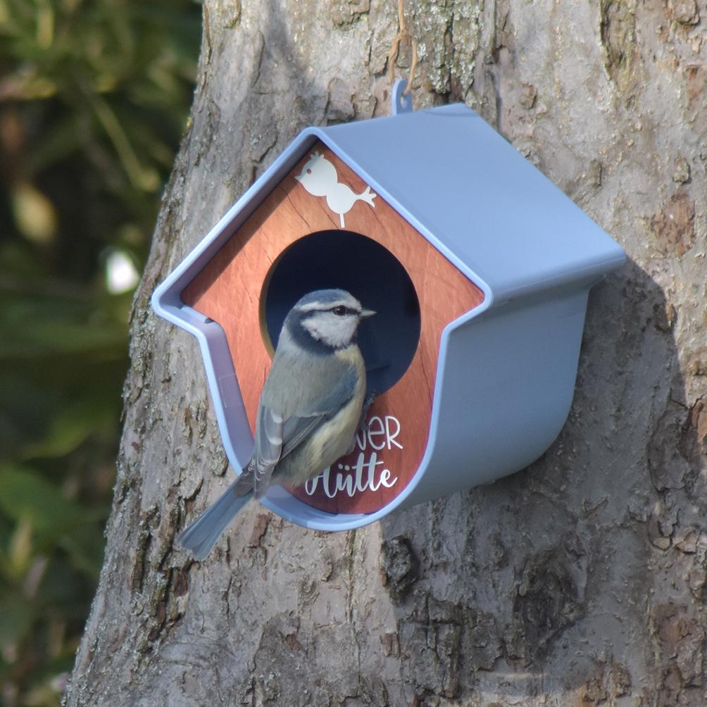 Vogelhäuschen - KörnerHütte - Hellblau1