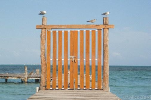 Quintana Roo-9