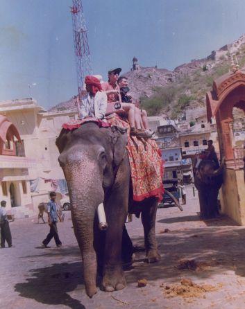 Amber Elephant