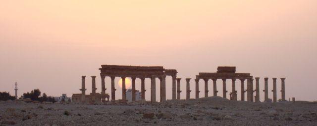 Palmyra11