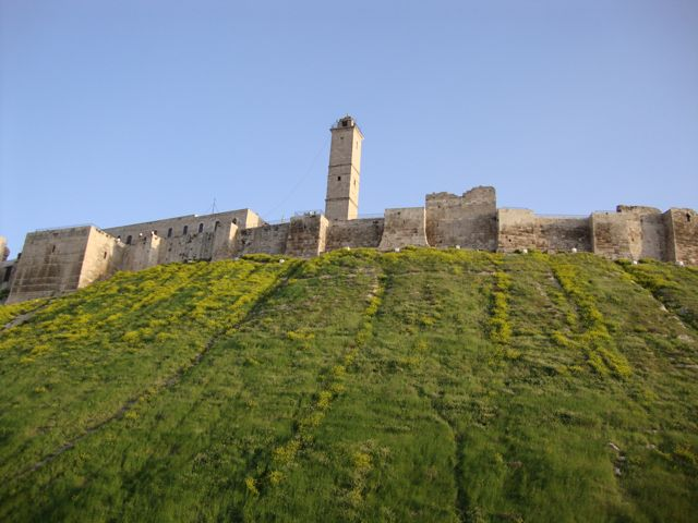 aleppo citadel4