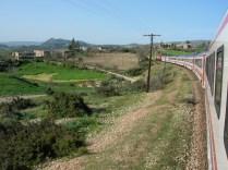 Turkey Train